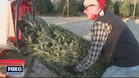 Mequon tree farm busier than ever as families get outdoors