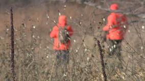 COVID-19 safety encouraged as Wisconsin's deer hunt begins