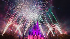 Walt Disney World to stream 'Fantasy in the Sky' fireworks for New Year's Eve