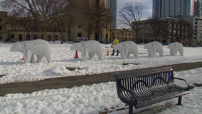New public art installation comes to Cathedral Square Park