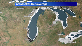 Lake Michigan ice coverage catching up fast after a mild start to 2021