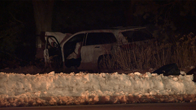 Milwaukee man dies from injuries after crash into tree in Shorewood