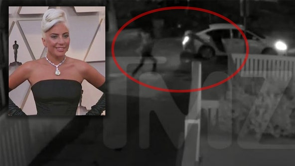 Lady Gaga dognapping: Surveillance video shows violent shooting of dog walker