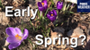 An early spring is a high possibility for Wisconsin