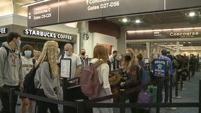 AAA survey indicates traveler optimism is growing as summer nears