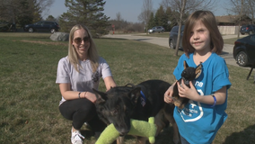 Retired St. Francis police dog spreads autism awareness