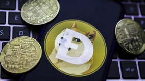 'Doge Day': Cryptocurrency fans aim to drive Dogecoin value up