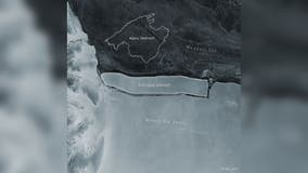 Iceberg bigger than Manhattan breaks off from Antarctica, dubbed world's largest