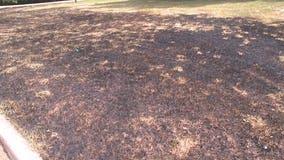 Kenosha County burn ban, drought means high fire risk