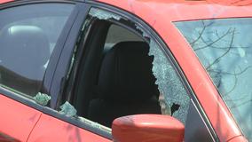 Glenbrook Apartments: Cars stolen, vandalized