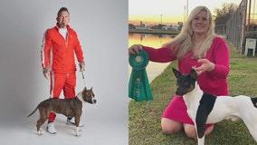 Westminster Dog Show: Oconomowoc teams competing
