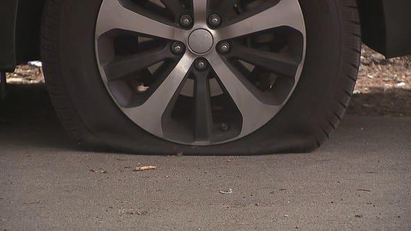 Vehicles vandalized in Milwaukee's Burnham Park neighborhood