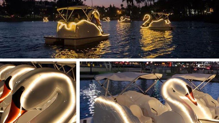 Milwaukee Illuminated Swan Boat Night Rides