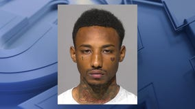 Glendale K9 nabs fleeing driver of stolen loaner car; man charged