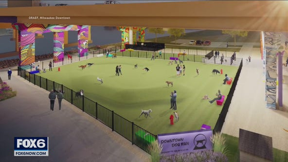 Downtown Milwaukee dog park push