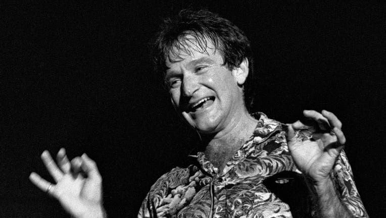 Robin Williams At Chastain Park Amphitheater
