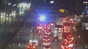 Police chase closes I-41 SB near zoo, arrests made: sheriff