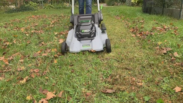 Money-saving fall chores