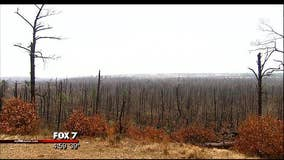 Recovery efforts continue in Bastrop County following 2011 fire