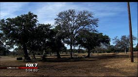 Texas Department of State Health Services assisting Zilker Park rabies case