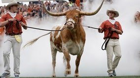 Photographer files lawsuit against owners, handlers of Bevo XV