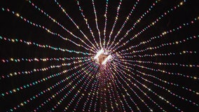 Zilker Holiday Tree lit up for the 53rd year