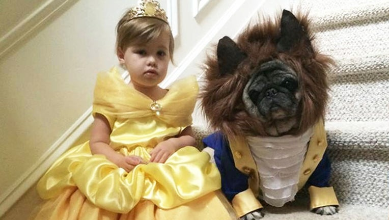 Beauty and the Beast costume-401385