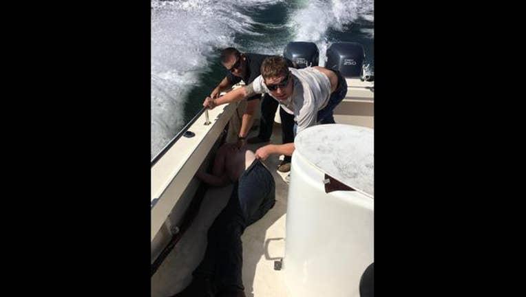 Hayward rescue_1475859436487-405538.jpg