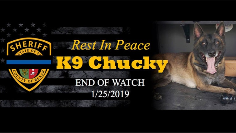 KTBC k9 Chucky_1548546405972.jpg.jpg