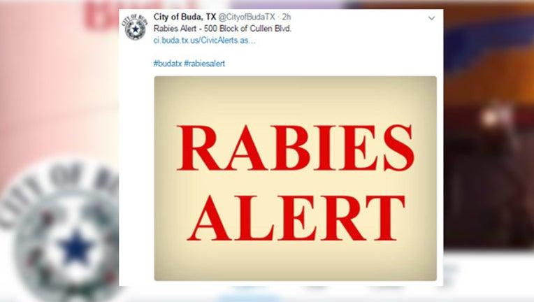 buda rabies_1497638319181.jpg
