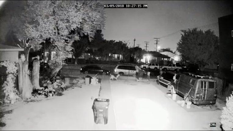 dog shot in South LA_1521652302166.PNG-407068.jpg