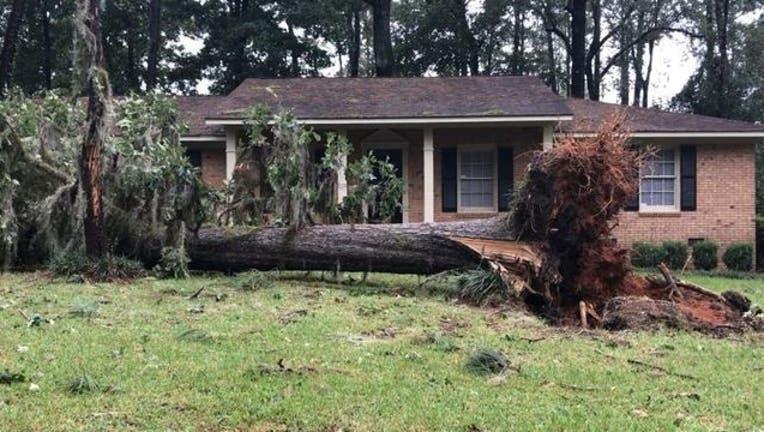 georgia-hurricane-irma_1505227462569-402429.jpg