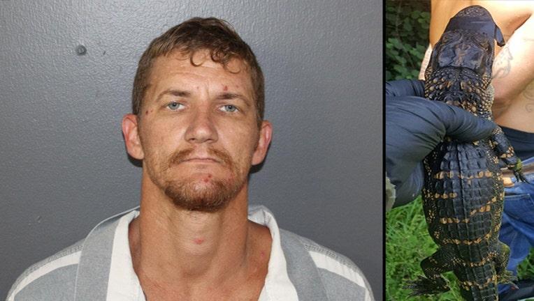 hardee county gator arrest_1562448612403.jpg-401385.jpg