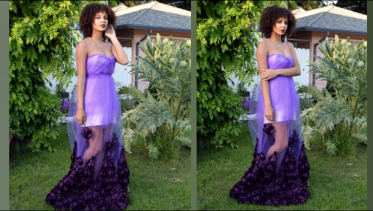 prom dress homemade_1494263522901-407068.PNG