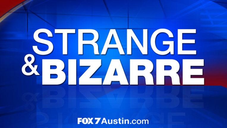 strange-bizarre-web-graphic_1447675081225.jpg