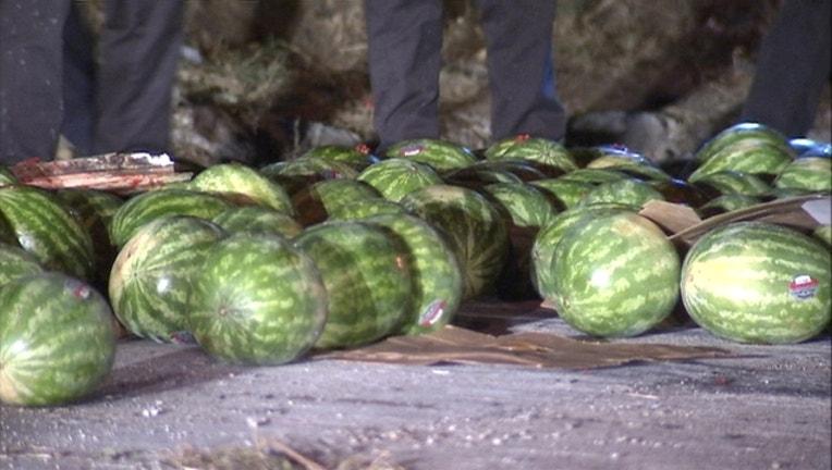 572f8280-watermelon1_1440681095170-409650.jpg