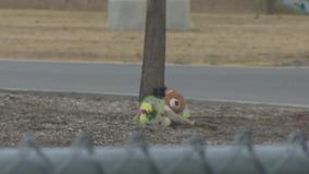 Two kids killed in separate auto-pedestrian crashes over weekend