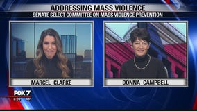 FOX 7 Discussion: Addressing mass violence