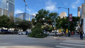 Strong winds knocks down tree in downtown Austin, 6-story construction trash chute