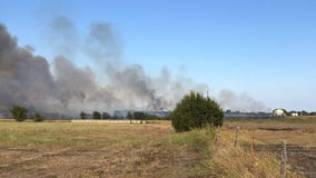 Hutto grass fire prompts evacuations