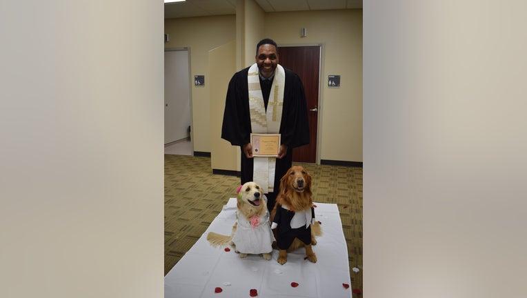 daaaf62d-Peaches and Duke attend their wedding at Methodist Mansfield Medical Center