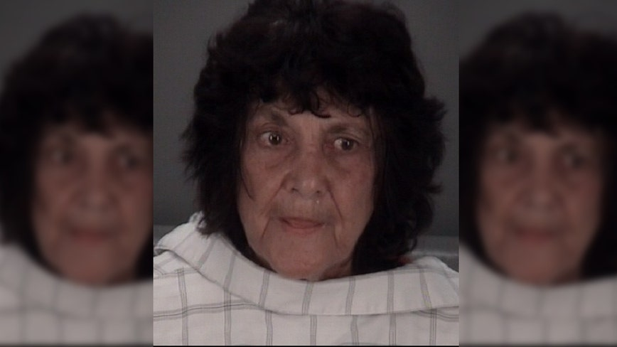 Florida woman allegedly attacks boyfriend with metal detector for watching porn, claims she did 'God's work'