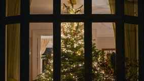 'Alexa, deck the halls': Amazon offers voice-activated Christmas tree to impress holiday guests