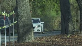 Growing concern over fate of more than 100 trees in Williamson County