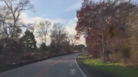 Williamson County cuts back on number of trees needing to be removed along Hairy Man Road