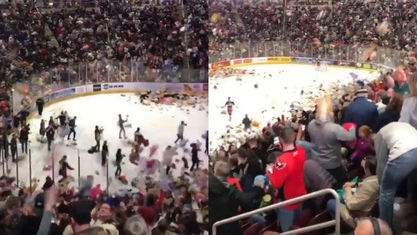 Fans pelt ice hockey rink with thousands of teddy bears for record 'bear toss'