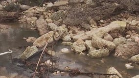 City to work on Shoal Creek flood threat after landslide stabilization negotiations fail