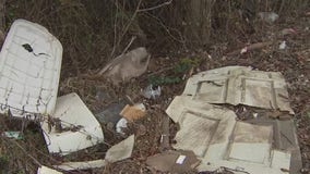 Business owners say illegal dumping on East Austin road must stop