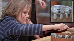 6-year-old boy creates clay koalas to raise money for Australian animals affected by wildfires