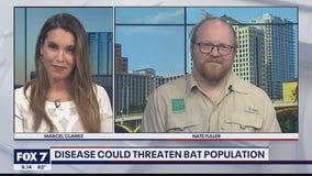 FOX 7 Discussion: Texas Parks & Wildlife on white-nose syndrome